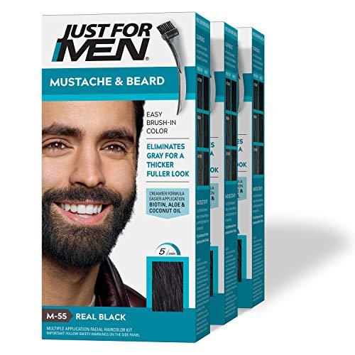 Just for Men Brush-In Farben und Bürste für Schnurrbart und Bart, 1 Set (3-teilig)