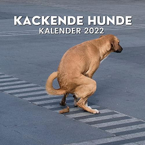 Kackende Hunde Kalender 2022: Lustige Geschenke für Freunde, Hundebesitzer, Weihnachten, Neujahr,...