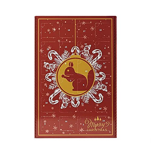 KERNenergie Premium Adventskalender – Weihnachtskalender mit Nüssen, Kernen und Trockenfrüchten, 24 Advents-Überraschungen, Snack-Kalender für 2021, 24 x 60 g