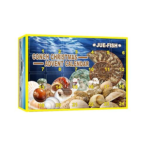 Conch Adventskalender 2021 Unique Style 24PCS Conch Collection Activity Kit Mega Fossi l Dig Kit Weihnachten Adventskalender Weihnachten Countdown Spielzeug Überraschungs Geschenk für Kinder