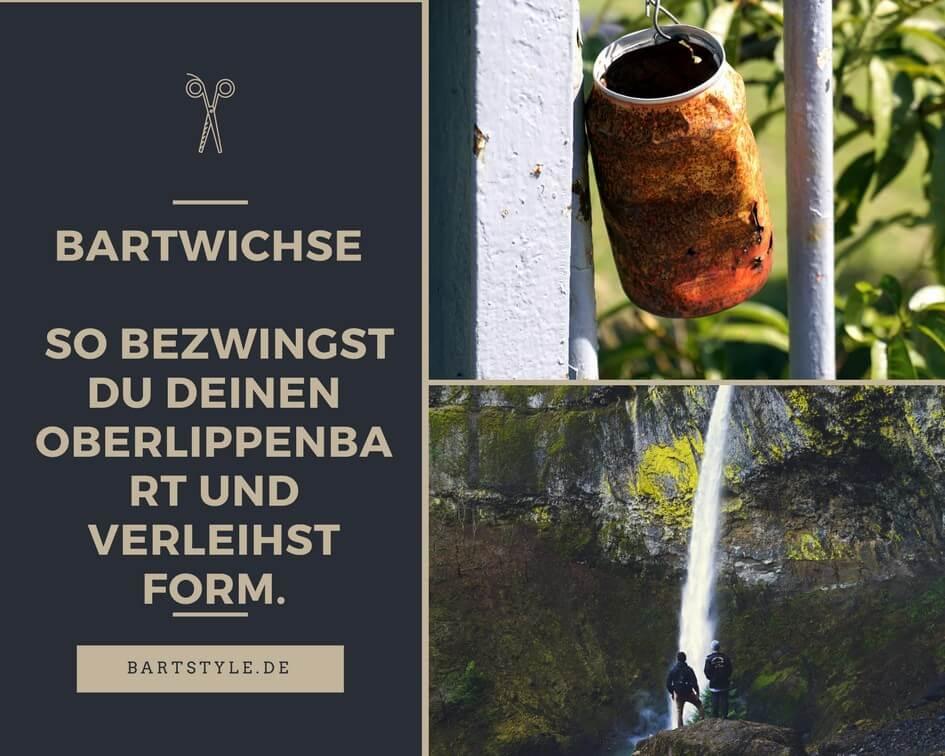 Bartwichse